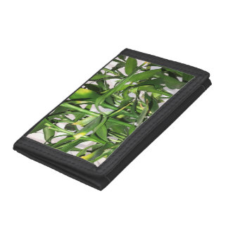 Green leaves and bamboo shoots house plant tri-fold wallet