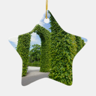 Green leaves arches ceramic star decoration