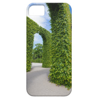 Green leaves arches iPhone 5 case