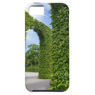 Green leaves arches iPhone 5 covers