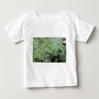 Green leaves closeup photography baby T-Shirt