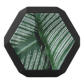 Green Leaves with White Stripes Closeup Black Bluetooth Speaker