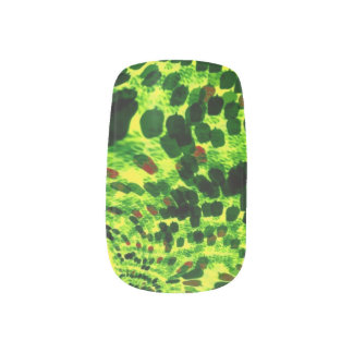 Green Leopard Spots Nail Sticker