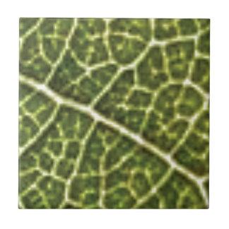 green linked tubes tile