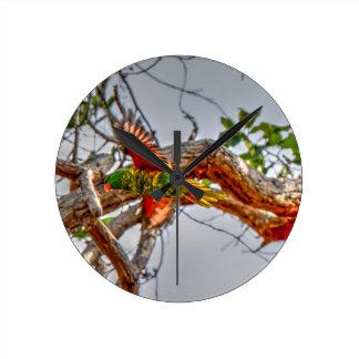 GREEN LORIKET RURAL AUSTRALIA ART EFFECTS WALL CLOCK