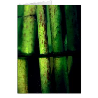Green macro card