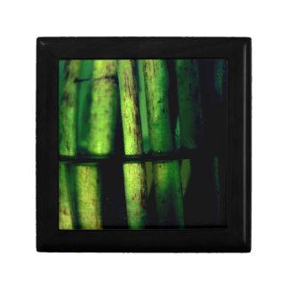 Green macro gift box