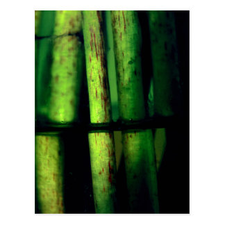 Green macro postcard