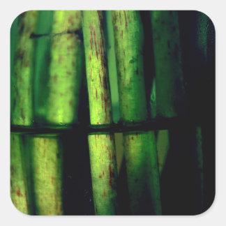 Green macro square sticker