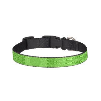 Green mandala pet collar