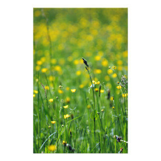 green meadow stationery