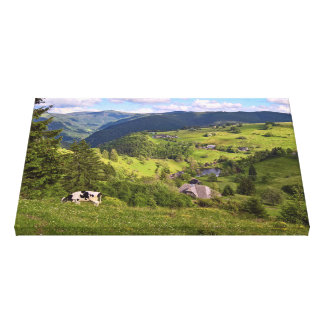 Green Meadows and a cow with panorama view Canvas Print