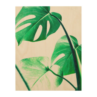 Green monstera leaves tropical exotic foliage wood print