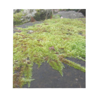 Green moss in nature Detail of moss covered stone Notepad