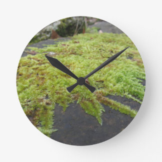 Green moss in nature Detail of moss covered stone Round Clock