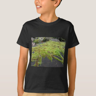 Green moss in nature Detail of moss covered stone T-Shirt