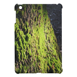 Green moss in nature  Detail of moss covered trunk Case For The iPad Mini