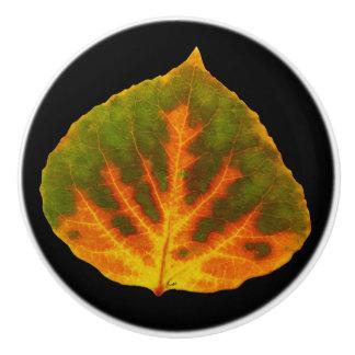 Green Orange & Yellow Aspen Leaf #1 Ceramic Knob