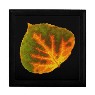 Green Orange & Yellow Aspen Leaf #1 Gift Box
