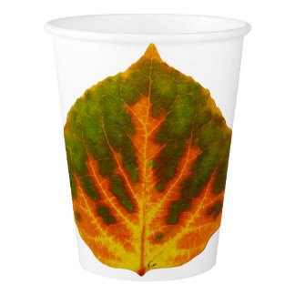 Green Orange & Yellow Aspen Leaf #1 Paper Cup