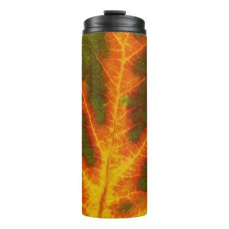 Green Orange & Yellow Aspen Leaf #1 Thermal Tumbler