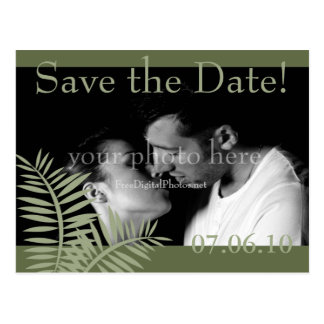 Green Palm Save the Date Postcard