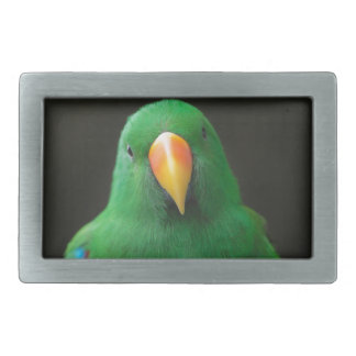 Green Parrot Belt Buckles