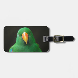 Green Parrot Luggage Tag