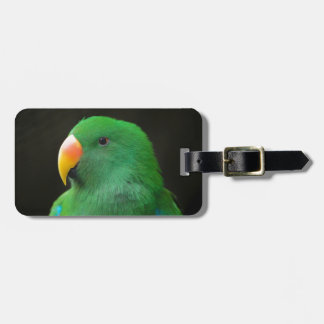 Green Parrot Profile Luggage Tag