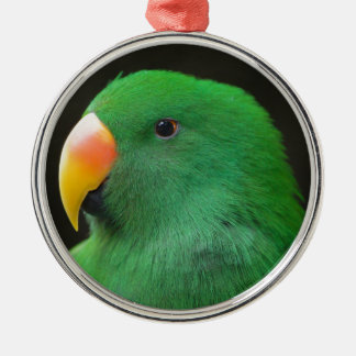 Green Parrot Profile Metal Ornament