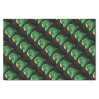 Green Parrot Profile Tissue Paper