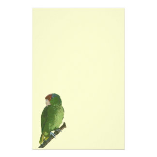 Green Parrot Stationery Design