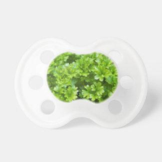Green parsley herb pattern dummy