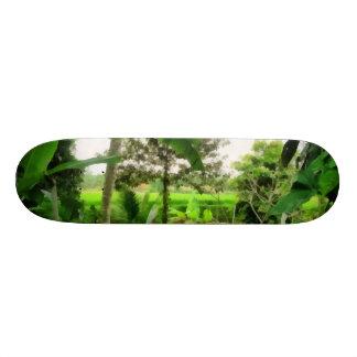 Green patch and fields skate board decks