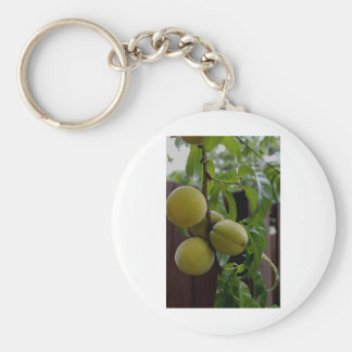 Green Peach Notecards Basic Round Button Key Ring