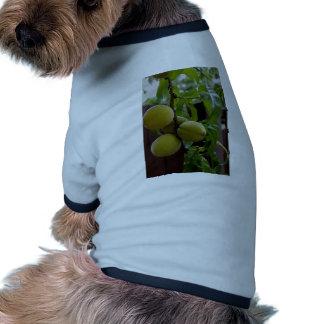 Green Peach Notecards Pet T Shirt