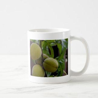 Green Peach Postcard Basic White Mug