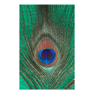 Green Peacock Feather Custom Stationery