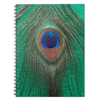 Green Peacock Feather Notebook