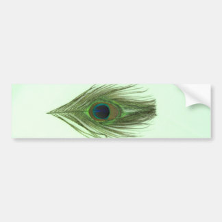 Green Peacock Feather on Green Bumper Sticker