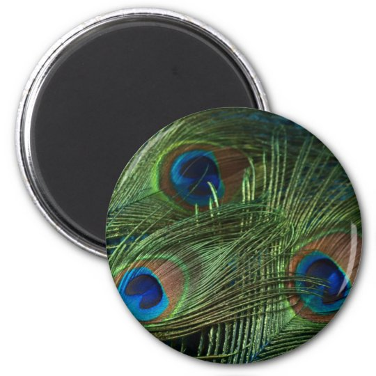 Green Peacock Feathers Magnet