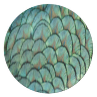 Green Peafowl Feathers Party Plate