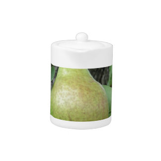 Green pears hanging on a growing pear tree