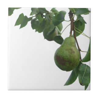 Green pears hanging on a growing pear tree ceramic tile