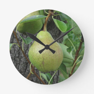 Green pears hanging on a growing pear tree round clock