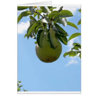 Green pears on tree branches greeting card