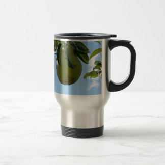 Green pears on tree branches mugs
