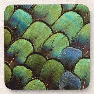 Green pheasant geather pattern coaster