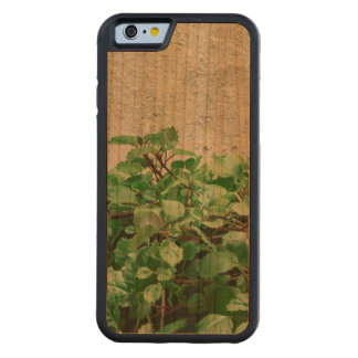 Green Plants Against Concrete Wall Carved Cherry iPhone 6 Bumper Case