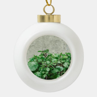 Green Plants Against Concrete Wall Ceramic Ball Christmas Ornament